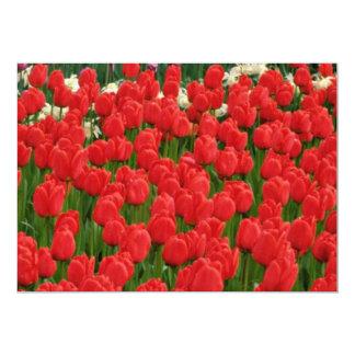 Flores misturadas das tulipas convite 12.7 x 17.78cm