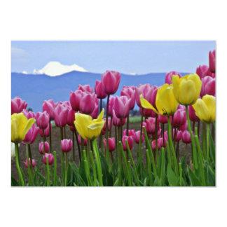 Flores misturadas das tulipas cor-de-rosa e convites