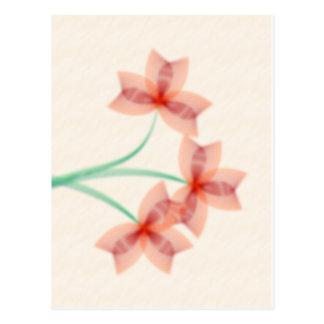 Flores no cartão do pergaminho cartão postal