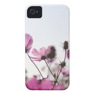 Flores no Sun Capinhas iPhone 4
