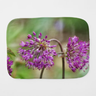 Flores roxas bonito do Allium Fraldinhas De Boca