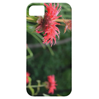 Flores selvagens capa barely there para iPhone 5