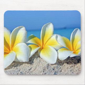 Flores tropicais mousepads