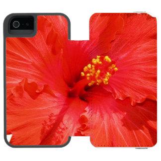 Flores vermelhas do hibiscus
