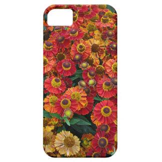 Flores vermelhas e alaranjadas do helenium capa barely there para iPhone 5