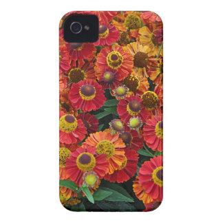 Flores vermelhas e alaranjadas do helenium capinha iPhone 4