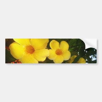 Floresça o jGibney 2014 amarelo da praia do cacau Adesivos