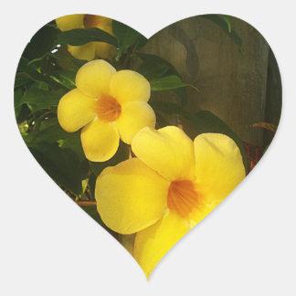 Floresça o jGibney 2014 amarelo da praia do cacau Adesivo Em Forma De Coração