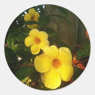 Floresça o jGibney 2014 amarelo da praia do cacau Adesivo Redondo