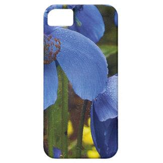 florescem as videiras do jardim das pétalas das capas para iPhone 5