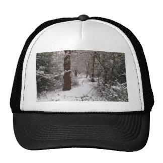 Floresta antiga coberto de neve bonés