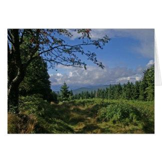 Floresta bávara • Cartão
