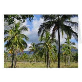 Floresta da palma de coco cartão