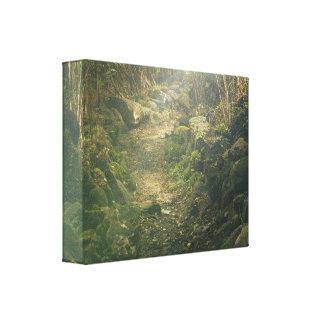 Floresta densa impressão em canvas