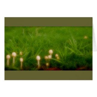 Floresta do cogumelo cartão comemorativo