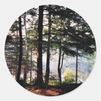 Floresta do vitral adesivo