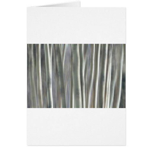 Floresta dos sonhos cartões