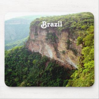 Floresta húmida de Brasil Mousepad