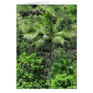 Floresta húmida havaiana cartão