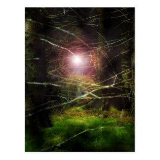 Floresta Mystical Cartão Postal