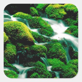 Floresta Oregon de Umpqua das quedas do espaço Adesivos Quadrados