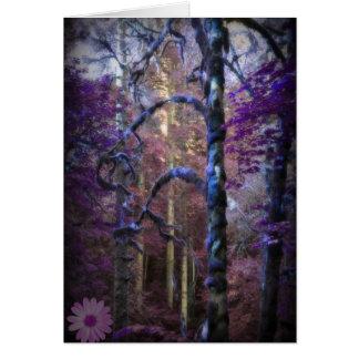 Floresta sagrado cartão