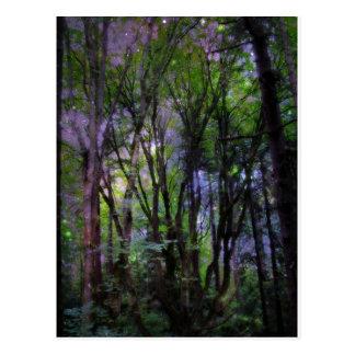 Floresta surreal das luzes feericamente cartão postal