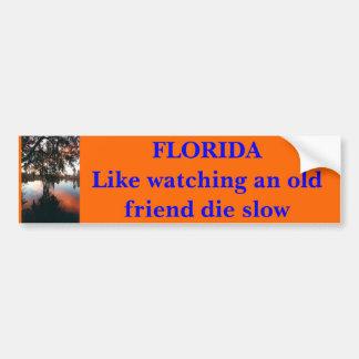 FLORIDA como a observação de um velho amigo morre  Adesivo Para Carro