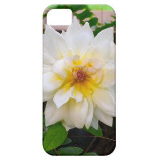 flower17 capas para iPhone 5