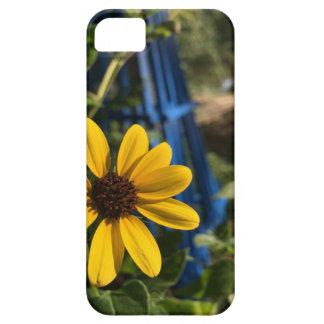 flower1.jpg capa para iPhone 5