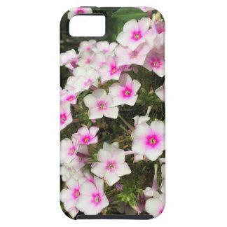 flower8 capas para iPhone 5