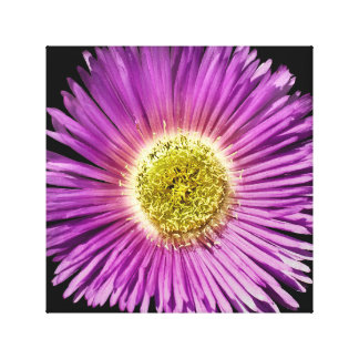 Flower close up impressão em tela