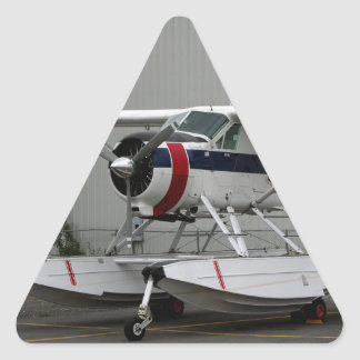 Flutue o plano 24, capa do lago, Alaska Adesivo Triangular