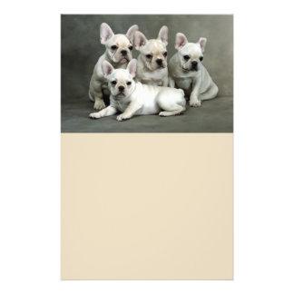 Flyer Filhotes de cachorro bonitos do buldogue francês