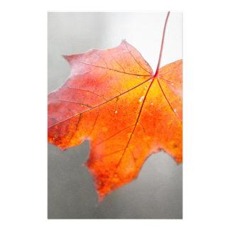 Flyer Folha de bordo vermelha - outono de veludo