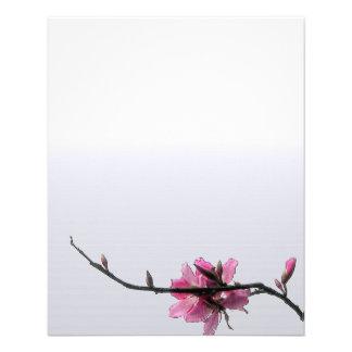 Flyer Insecto floral do costume do negócio do primavera