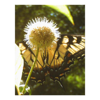 Flyer Monarca 2017 de junho floral