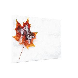 Folha caída nas canvas da neve