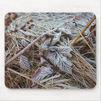 Folha congelada Mousepad