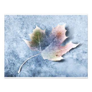 Folha congelada no gelo convite