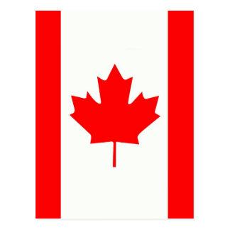 Folha de bordo canadense cartoes postais