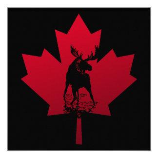 Folha de bordo e alces canadenses