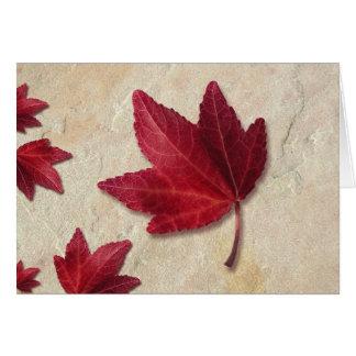 Folha de bordo vermelha cartão