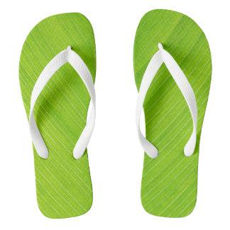 folha fresca verde-clara chinelos