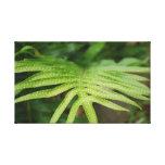 Folha tropical impressão de canvas esticada