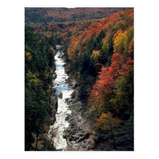 Folhagem de outono no desfiladeiro de Queechee, Cartão Postal