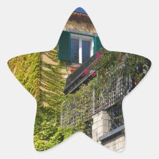 Folhas coloridas na casa adesivo estrela
