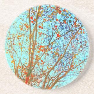 Folhas da laranja do outono e céu azul porta-copos
