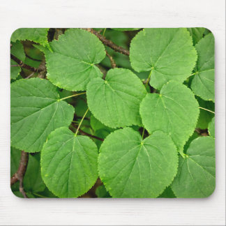 Folhas da limeira mouse pad