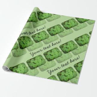Folhas da limeira papel para embrulho